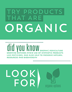 Attributes Store signage - Organic.