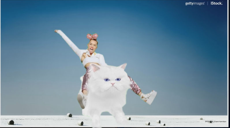 Photo of trendy female riding a white kitten.