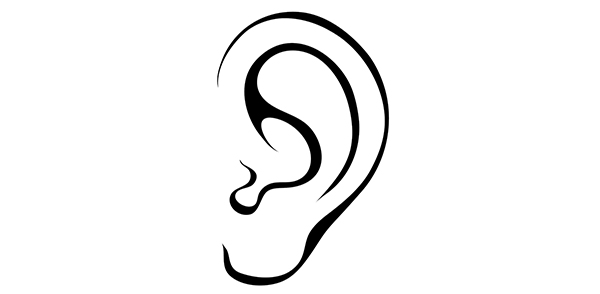 line drawing of ear