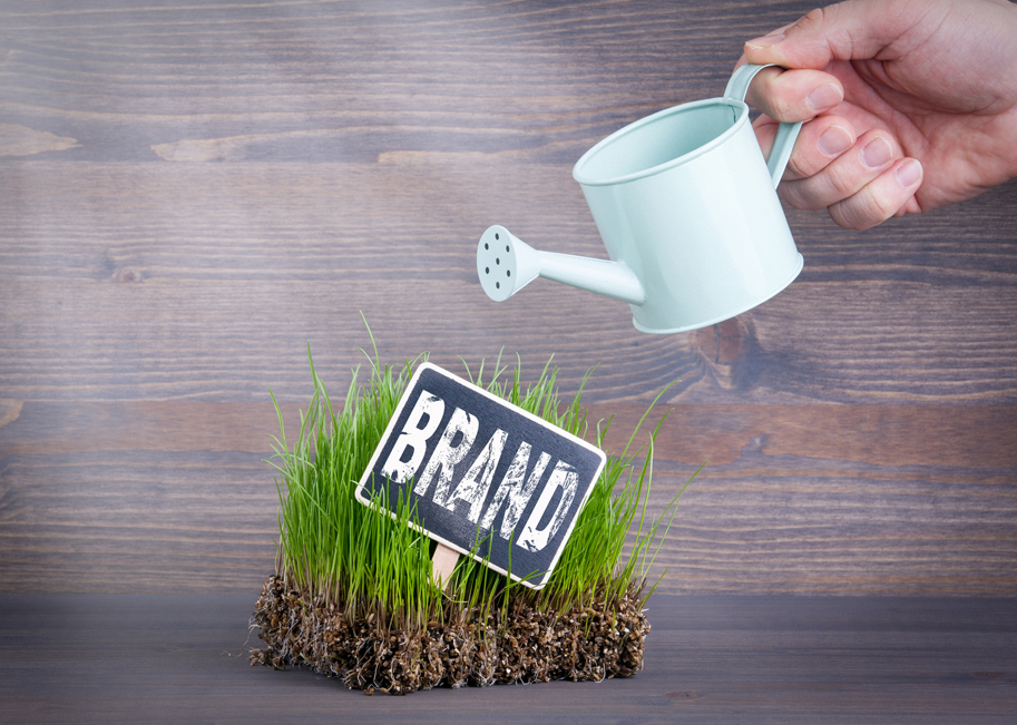 Concept photo of watering your brand so it grows.
